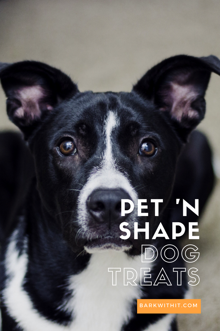 dog treat - pet n shape