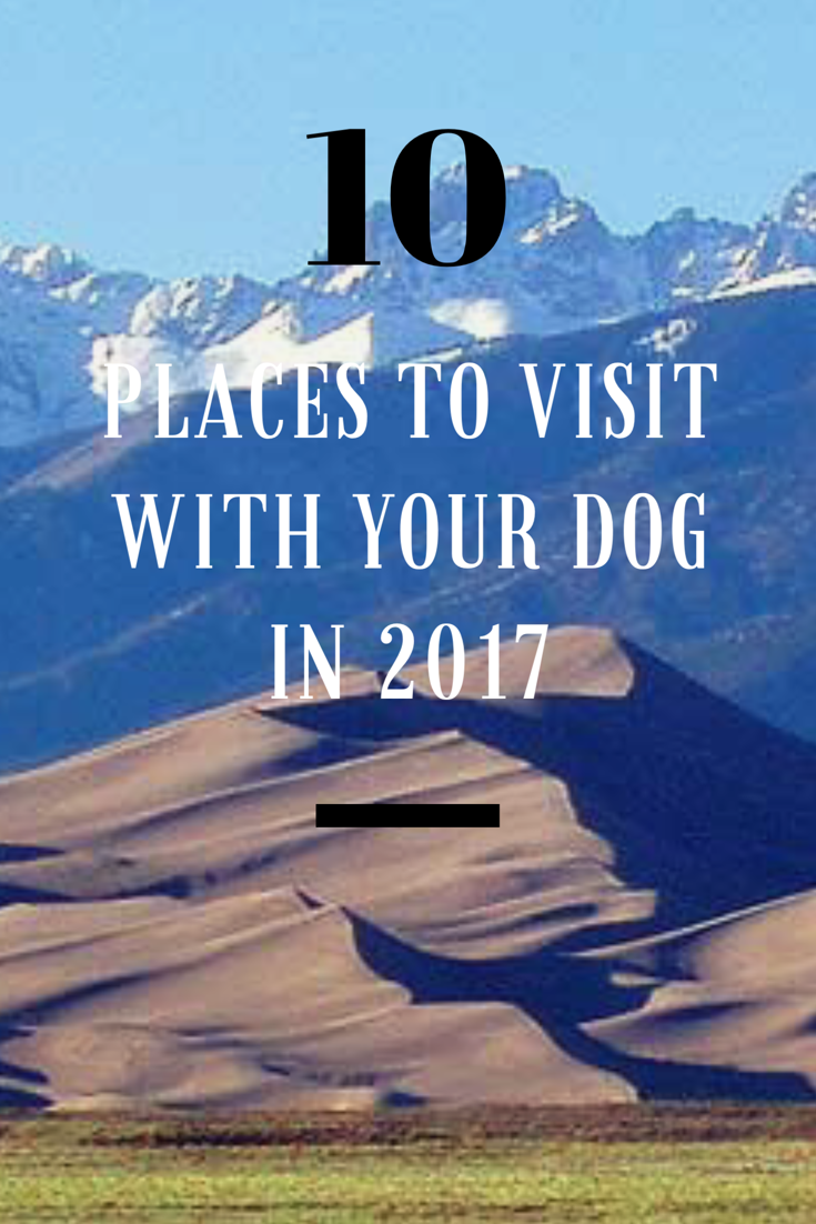 10 Places to visit with your dog