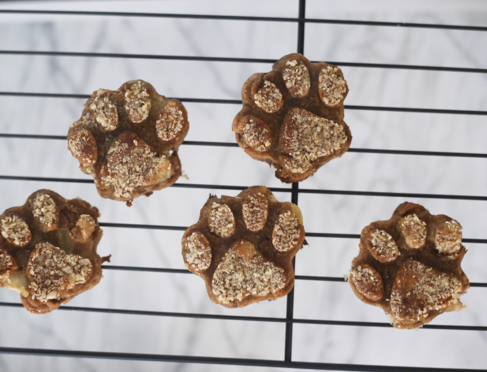 dog pawprint dog treats