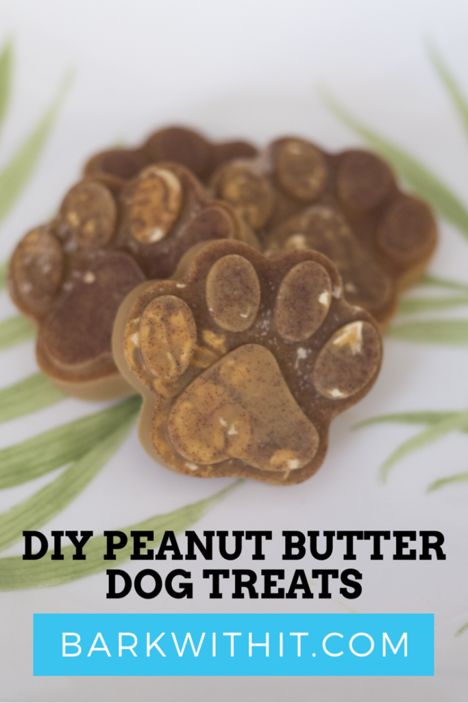 Peanut Butter Dog Treat Recipe that is Simple