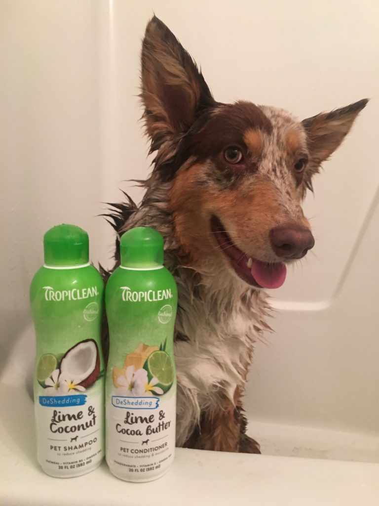 dog baths, dog grooming, tropiclean