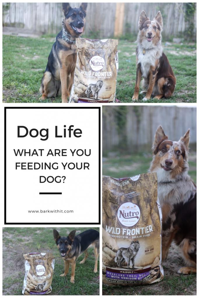Nutro Dog Food – Wild Frontier Grain Free