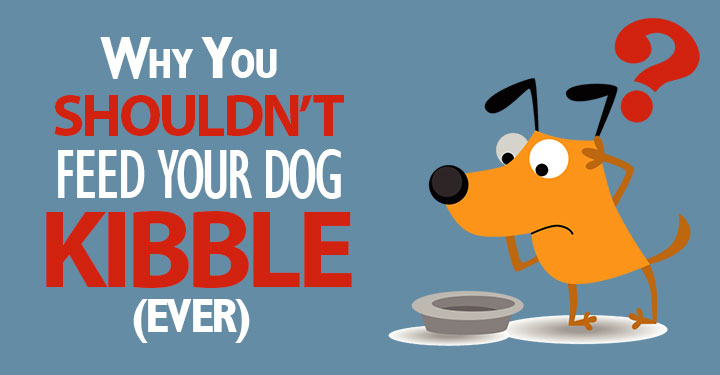 do not feed kibble