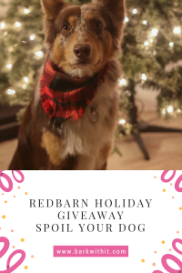 holiday giveaway with Redbarn