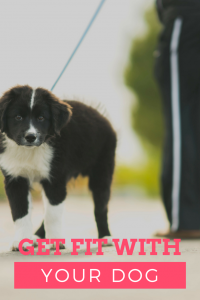 exercise with your dog - get fit with your dog