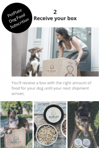 PetPlate Dog Food Subscription