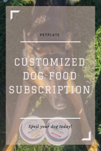 PetPlate - A Dog Food Subscription
