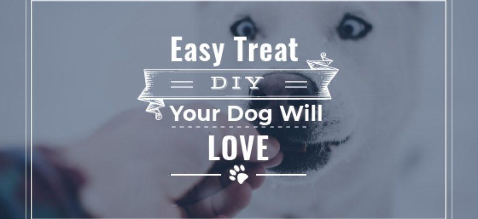 FROZEN DOG TREAT | EASY DIY DOG TREATS FOR SUMMER