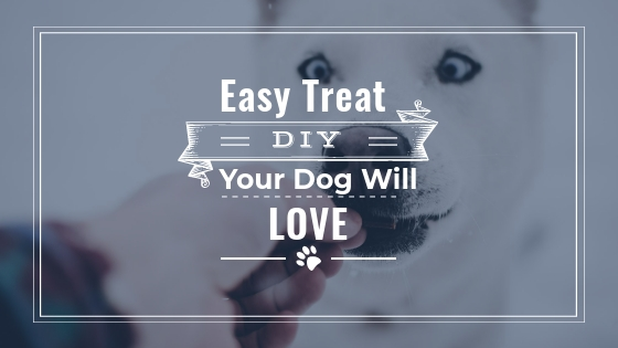 FROZEN DOG TREAT | EASY DIY DOG TREATS FOR SUMMER