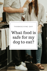 Thanksgiving Day Dog Safe Foods