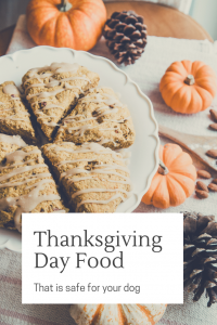 Thanksgiving Day Foods that are Safe for your Dog