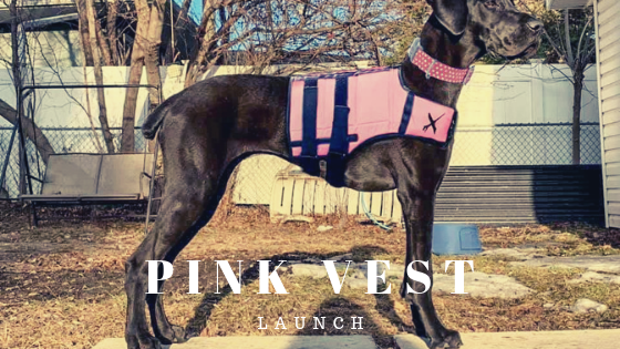 Pink Vest by XDOG with discount coupon code
