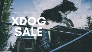 xdog black friday sale - dog jumping