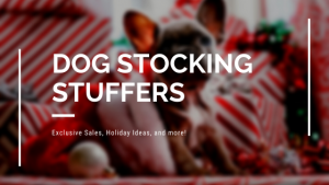 Dog Stocking Stuffer Gift Ideas