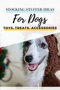 The Ultimate Dog Stocking Stuffer Gift Guide. Spoil your dog with toys, treats, and accessories.