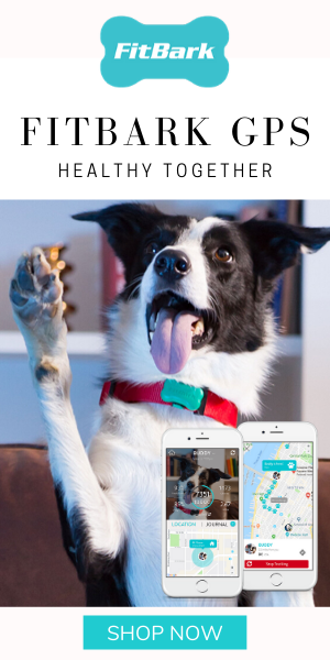 FitBark GPS Dog Health Tracker