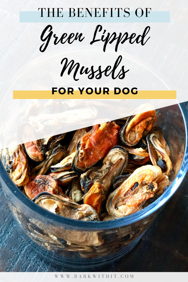 The benefits of Green Lipped Mussels for dogs.