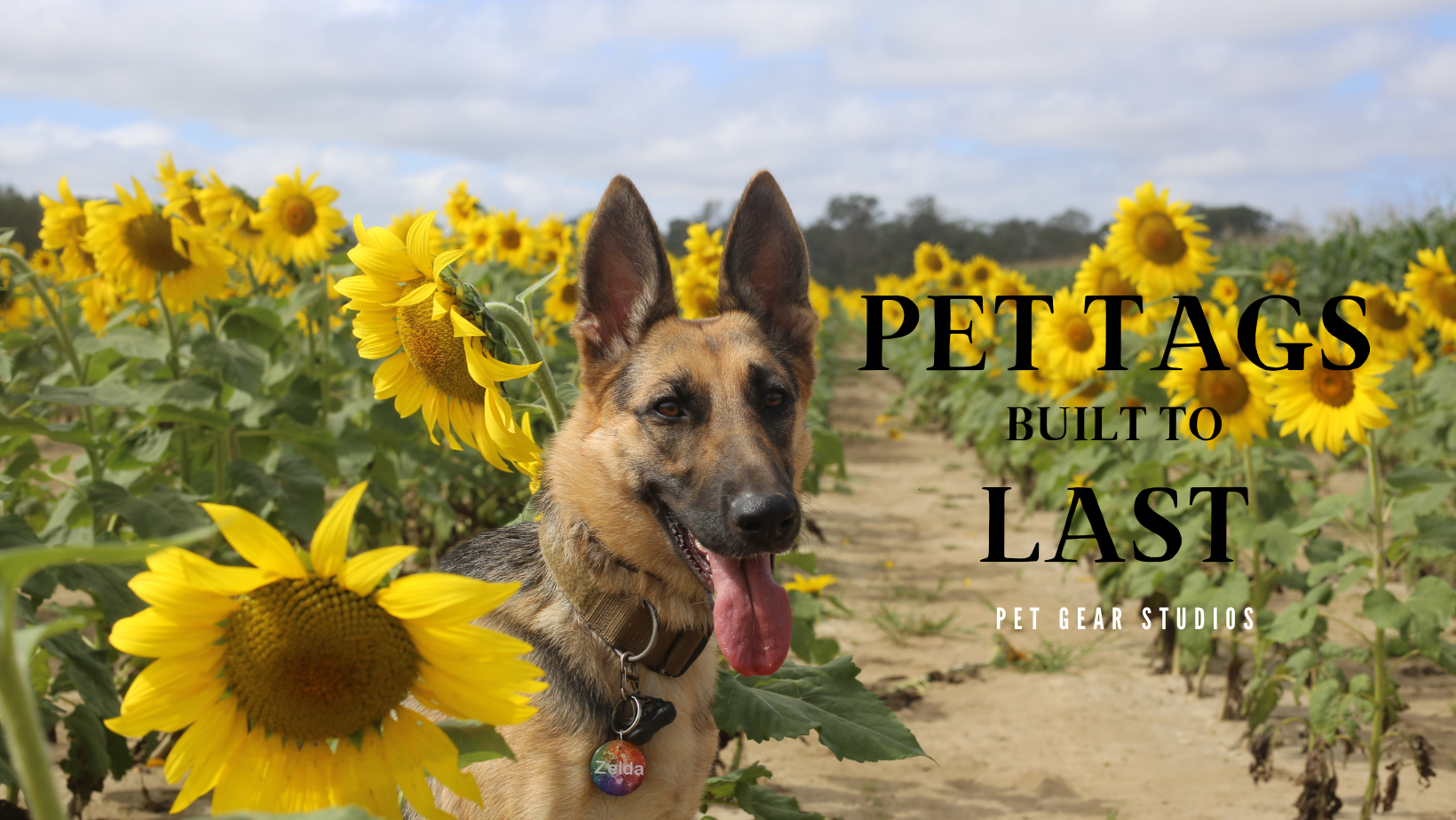 Pet Gear Studios - Pet Tags - Dog Tags