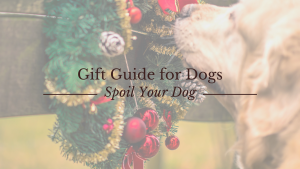Dog Gift Guide - Gift Guide for Dogs