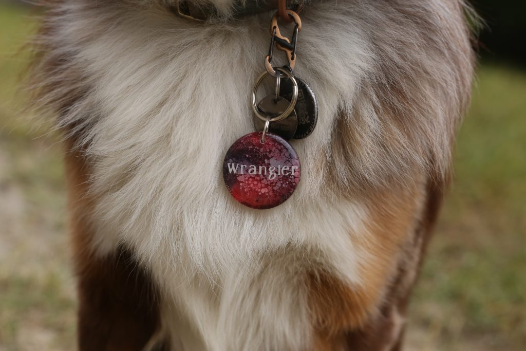 Dog Gift Guide Holiday Gift Ideas for Dogs Pet Gear Studios Custom Dog Tag