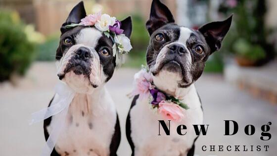 New Dog Checklist - MaggieLovesOrbit