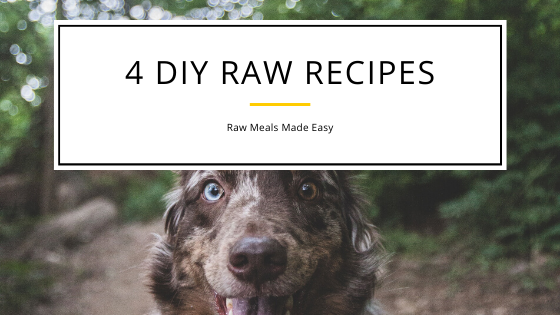 Raw Recipes for Dogs Made Easy