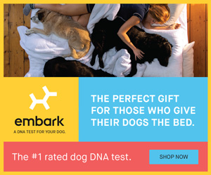 Embark DNA Test