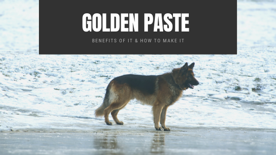 Golden Paste DIY