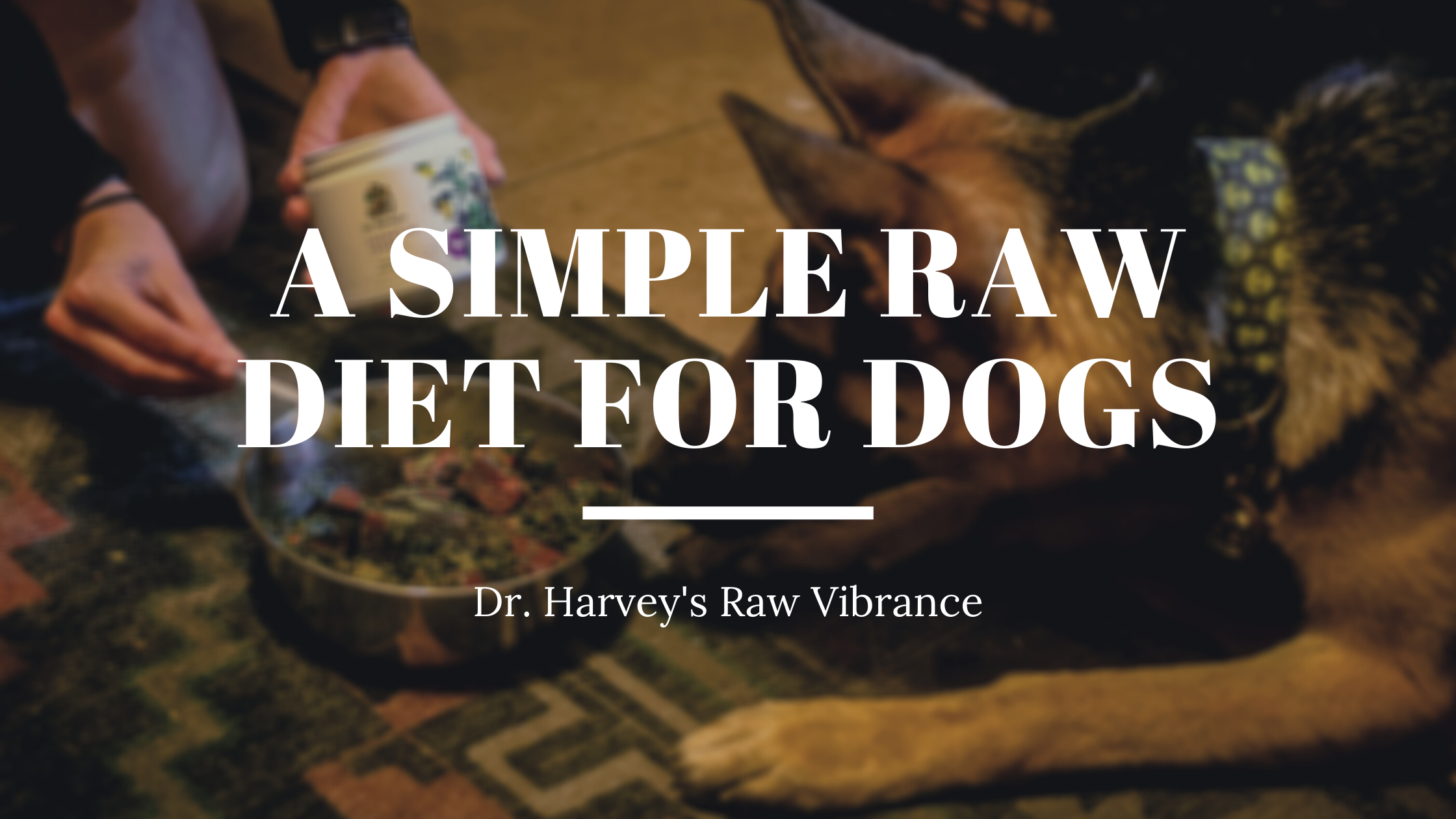 Dr. Harvey's Raw Diet Made Simple